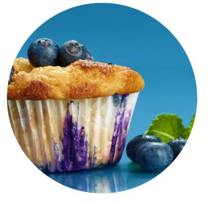 NASM blueberry muffin